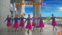 世外桃源全国明星团队南阳和平广场舞系列--爱我就嫁到草原来(团队版)