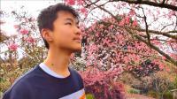 奥克兰的春天, 新西兰旅游频道