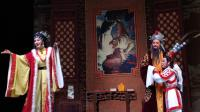 玉环龙溪山里村2019.4.15乐清越剧团﹤白兔记﹥主角周妙利(下本)