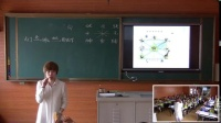 西師大版三年級數學《東南、西南、東北、西北》優質課教學視頻