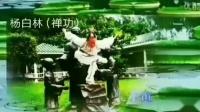 杨氏拳【自然门】功法,杨白林夫妇(63岁)晨练,歌曲【观世音菩萨祈祷文】