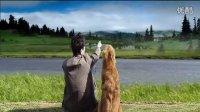 我和狗狗一起看大海