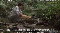 【JET推理剧场】JET.mystery35黄金神犬百里破案