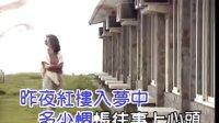 陈亮吟 - 红楼梦