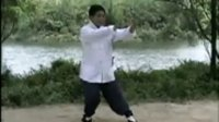 杨氏太极拳85式 第四 五 六式