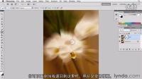 专业单反相机摄影术基础入门视频教程24在PS中创建照片的模糊效果