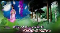 花里的妹子萧上歌-山茶花花演唱mtv版.