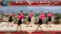 新黄梅:对花(梨花组合演唱 )紫燕儿中四舞曲制作