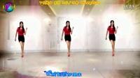 2016最新 步子舞教学《 夏天的浪花》DJ阿采广场舞127 含教学