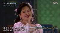 朝鲜王在山艺术团著名歌手玄松月演唱的《海军向军港返航》