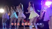 2017中文DJ舞曲串烧(76)