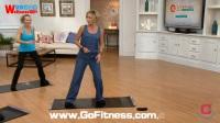 【去健身】功能运动健身滑垫 滑板 核心训练器械