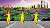 山上之光广场舞《零度桑巴》原创印度舞附教学