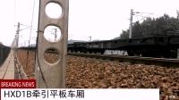京广线火车集锦。