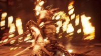 地狱之刃塞娜的献祭-剧情(2)