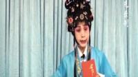 紫光录制·花木兰(机房)蒋茹琴·豫华豫剧团演出