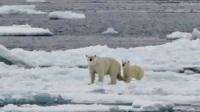 2015北极三岛24日行
