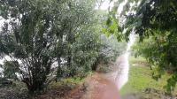 雨天的中秋节