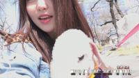 Brave Girls - Vlog 04 - 侑廷vs 宠物狗 Laren