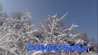 沈北新区喜洋洋广场舞《沈北新区风光-雪》我爱你塞北的雪(字幕)