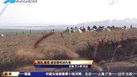 """央视CCTV5报道中华户外网""""2012鄱阳湖国家湿地公园观鸟露营季"""""""