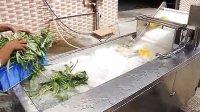 QX-22 vegetable washing machine 2 stage