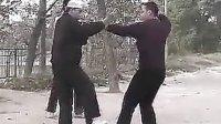 河南周口心意六合拳教学全集(含套路、功法、实战应用)