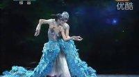 舞蹈《雀之恋》杨丽萍 王迪 42