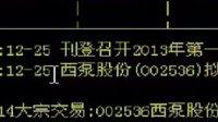 20130106-个股资料1