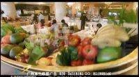 长沙凤凰酒店评星片-广州米兰联盟广告公司