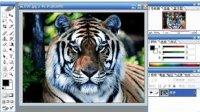 photoshop ps3视频教程 平面设计 PS从入门到精通 第一章 第5讲