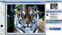photoshop ps3视频教程 平面设计 PS从入门到精通 第一章 第6讲