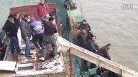 莫扎法王 2013 1月27日 武汉放生 一亿生命 C