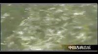 中国十大古典名曲( 十面埋伏) 琵琶演奏