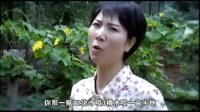 郑州德化新陆农药生命一号QQ 290040846
