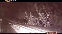 杭州:男子家中装五个监控 多角度拍下小偷作案全程 130320