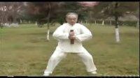 太极拳功力训练003