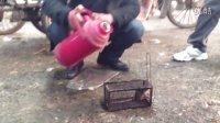 热水烫老鼠
