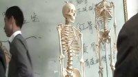 """按摩師職業教材系列之解剖基礎知識男女""""骨盆""""講師:葉猷震"""
