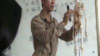 按摩師職業教材系列-運動系統解剖學基礎,主講:葉猷震