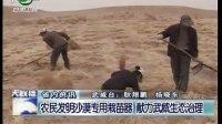 农民发明沙漠专用栽苗器 献力武威生态治理