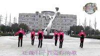 天使之翼广场舞 红尘情歌(清晰)(流畅) 标清