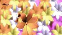 免费婚庆视频素材下载网站_51_030