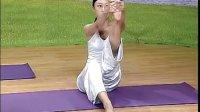 瑜伽视频教程初级 瑜伽初级教程在家练