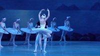 芭蕾舞《天鹅湖》马林斯基剧院 Swan Lake 2013.06.06 红蓝3D