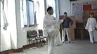 【张志俊先生】驻马店培训〔6〕 标清