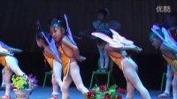 幼儿舞蹈:梁祝(潜山民办幼儿园2013舞蹈大赛)
