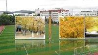 辽东学院机电学院12届未来星工作室制作毕业视频