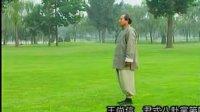 王尚智 尹式八卦掌6.传统套路 推托掌 2VCD