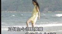 林翠萍-情深浓各分西东